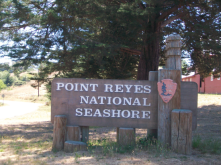 IMG_2457a-Point Reyes
