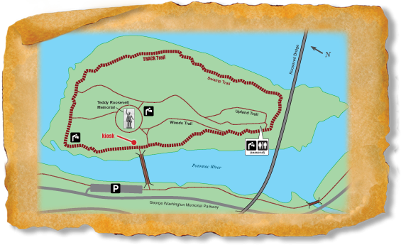 treasure_map_SMALLwebsite_0_3